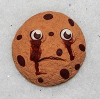 O biscoito do arrependimento