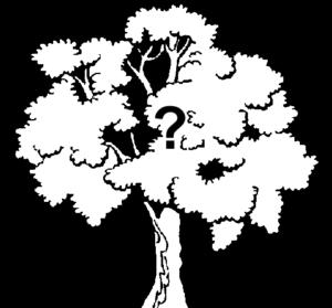 árvore confusa